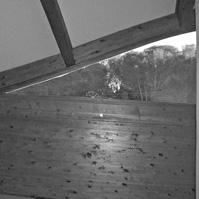 Détail de la charpente apparente en bois en lamellé collé.</p>