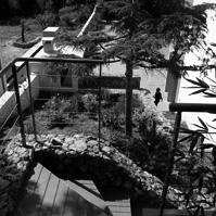 Accès au jardin par des escaliers en pierre récoltées sur le terrain lors du chantier.<br />