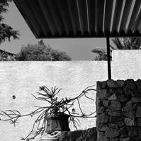 Détail mur en pierre du jardin et pergola métal et bois.<br />